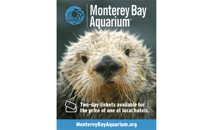 photo regarding Monterey Bay Aquarium Printable Coupon identified as San Francisco Drive Discount codes Conserve Revenue With Excursion, Eating